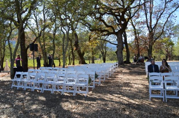 BR Cohn wedding ceremony